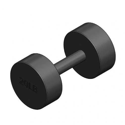 Cast iron Round fixed dumbbell 20lb