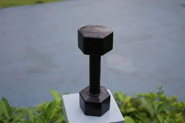 Cast iron dumbbells from VIC