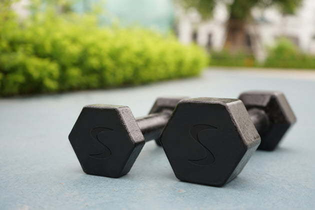 hex fixed weight dumbbells